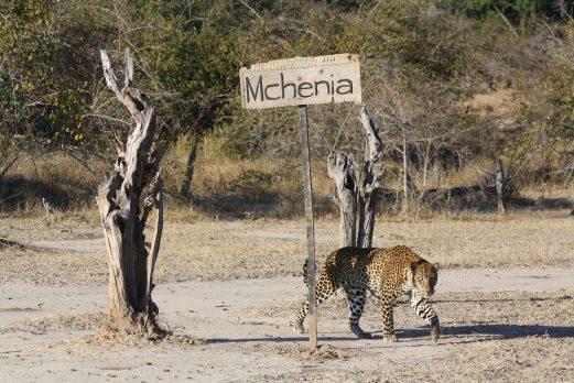 Mchenja Camp