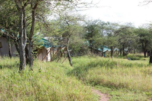 Nasikia Central Camp