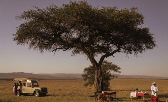 Kenya : Safari Classic