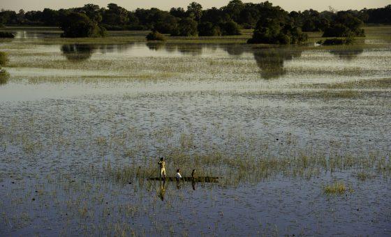 Botswana: Affordable Botswana