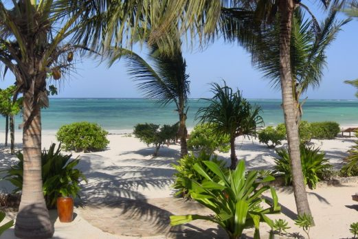 Tanzania: Migration & Beach