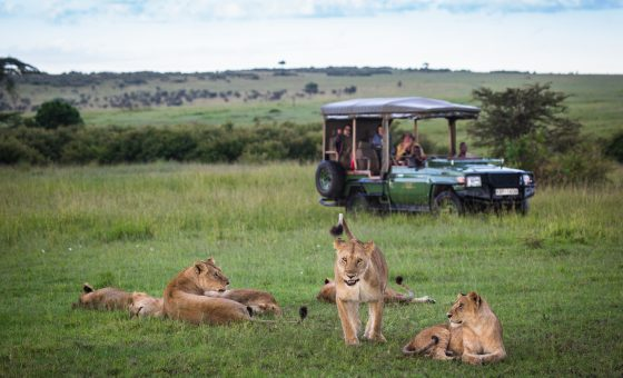 Kenya: Simply Safari And Beach